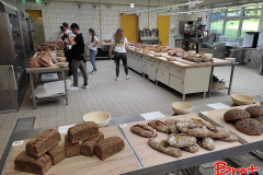 Bread_Summercamp_2021_Auswahl-24
